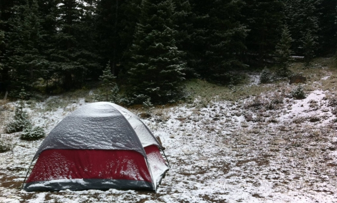 Red snow-dusted tent in front of a stand of evergreen trees.